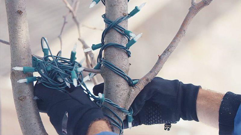 Как украсить деревья гирляндами