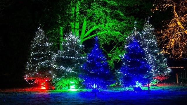 Украшение елки на улице новый год